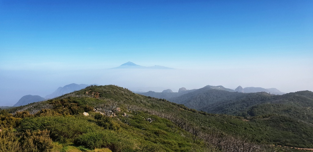 View of Garajonay national park and Teide in La Gomera.