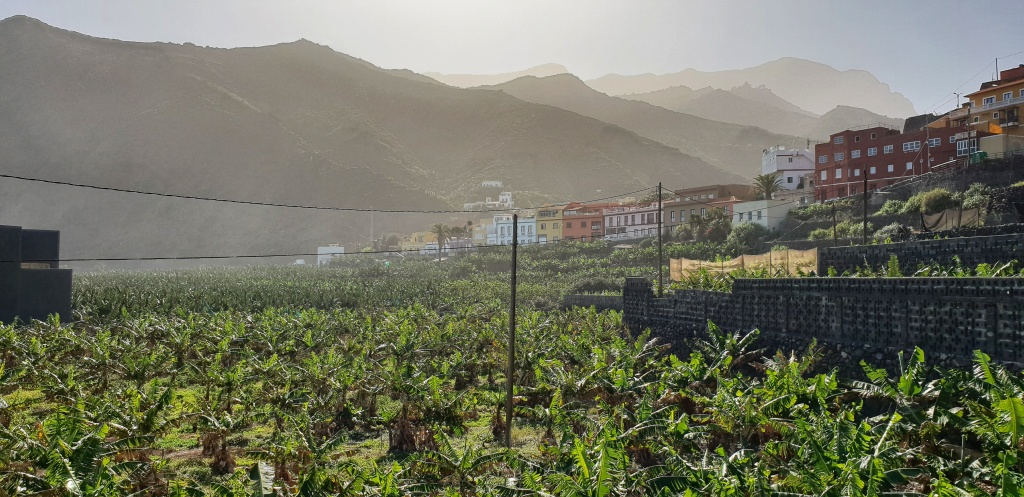 Hermigua on La Gomera seen from the shore with banana plantation in front